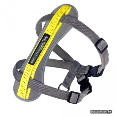 e20d13ffc280 bellomania rupert sport εκπαιδευτικο σαμαρακι για σκυλο ασφαλες δεσιμο