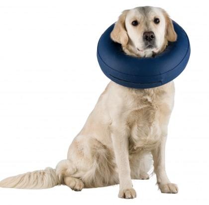 trixie ανετο ελισαβετιανο κολαρο προστασιας σκυλων