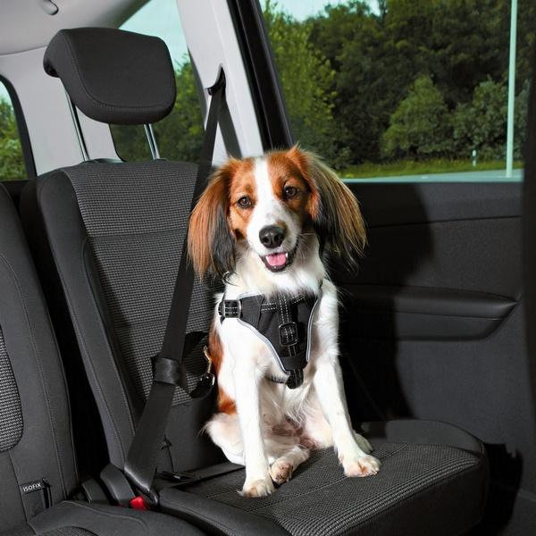 trixie σαμαρακι σκυλου ζωνη ασφαλειας αυτοκινητου για προστασια