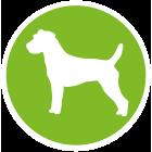 Canvit Skin Coat Snack Grain Free σνακ σκυλων για το δερμα και το τριχωμα