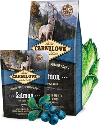 ολιστικη τροφη Carnilove Salmon Grain Free ενηλικων σκυλων με σολομό