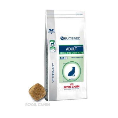 royal canin adult small τροφή σκυλων μικρής φυλης