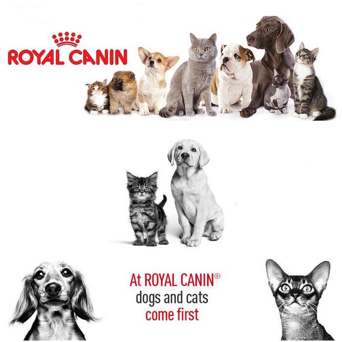 shop4pets.gr_royal_canin_dog_cat_food