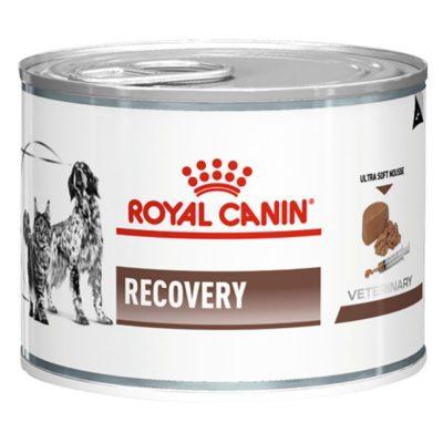υγρή γατας τροφη κονσερβα κλινικη διαιτα σκυλων για αναρρωση Royal Canin Recovery