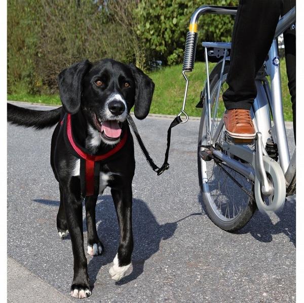 trixie σετ για προσδεση σκυλου για βολτα με ποδηλατο
