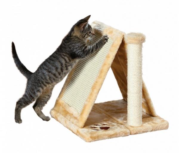trixie avila ονυχοδρομιο για γατες