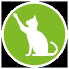Canvit Salmon Oil συμπληρωμα διατροφης λαδι σολομου γατας βιταμινες σκυλων