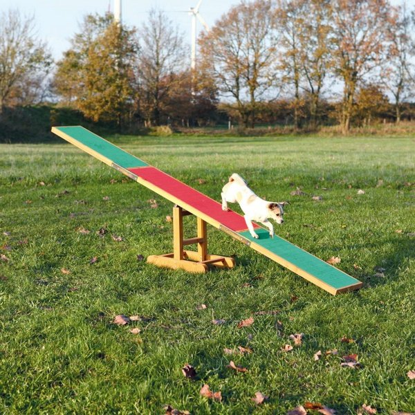 trixie agility seesaw τραμπαλα εκπαιδευσης σκυλου