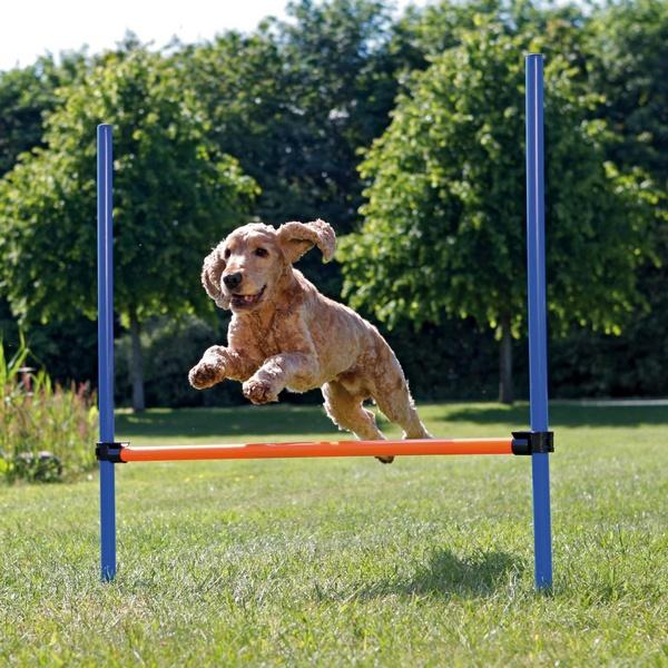 trixie agility hurdle εμποδιο για εκπαιδευση σκυλου