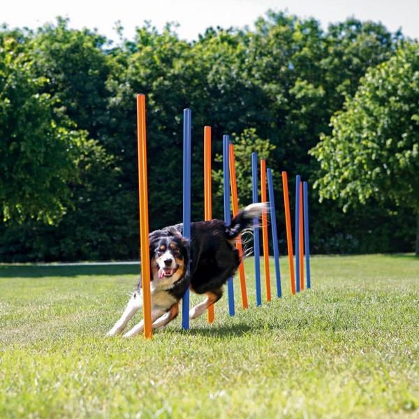 Trixie agility slalom σλαλομ εκπαιδευσης σκυλου