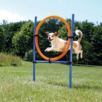 Trixie Agility Ring στεφανι για αλματα εκπαιδευση για σκυλους