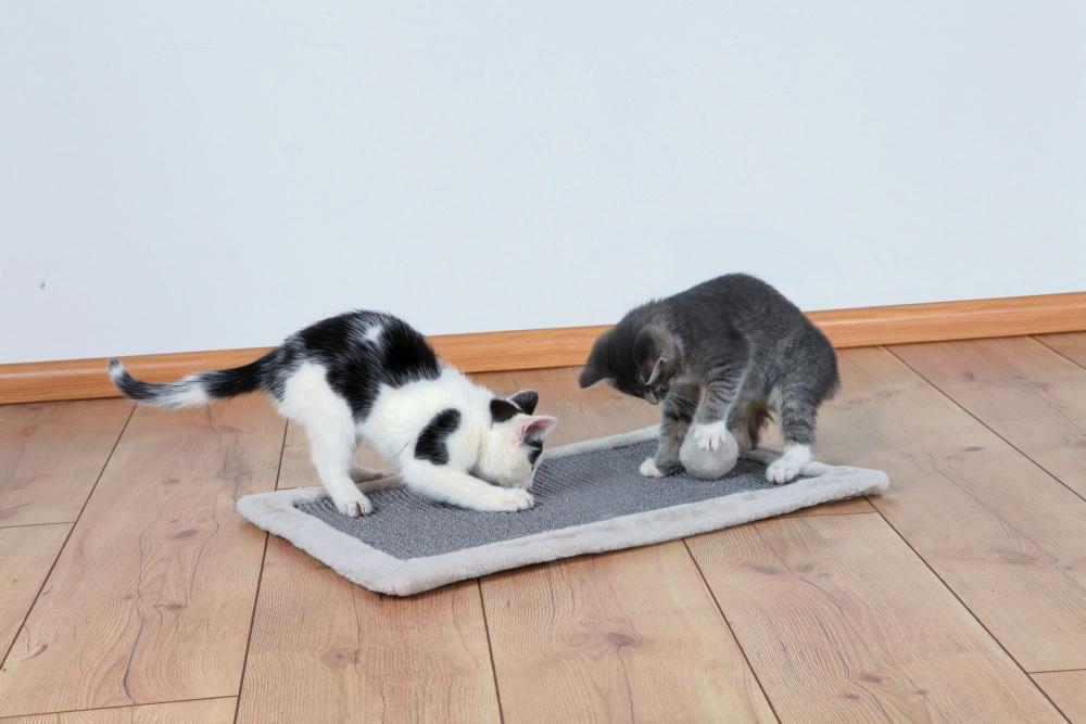 Το Trixie ονυχοδρομιο χαλακι γατας
