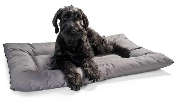 Hunter Gent αντιβακτηριδιακα κρεβατια σκυλου στρωματα αδιαβροχα
