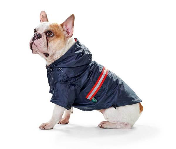 Hunter αδιαβροχο σκυλου ρουχο Niagara