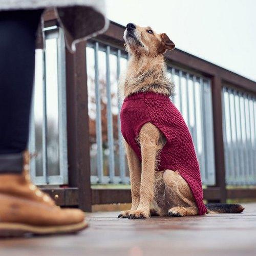 Hunter ρουχο πουλοβερ σκυλων Malmo