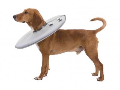 Trixie γατας κολαρα προστασιας για πληγες σκυλου απο γλυψιμο ξυσιμο μετα απο επεμβασεις
