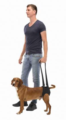 ΤοTrixie Βοηθημα βαδισης περπατηματος σκυλων για αναπηρους σκυλους