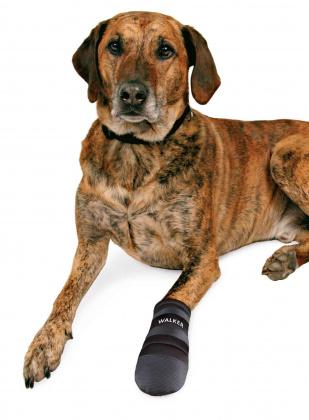 Trixie Walker Care αδιαβροχα παπουτσακια για σκυλους καλτσες
