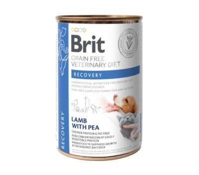 ΗBrit Recovery VD κλινικη γατας κονσερβα σκυλου τροφη για σκυλους για αναρρωση