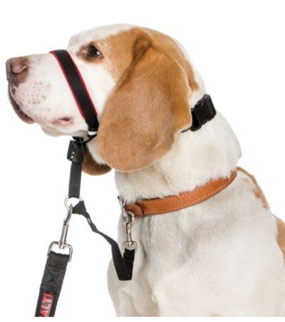 Halti Optifit εκπαιδευτικο κολαρο κεφαλιου σκυλου