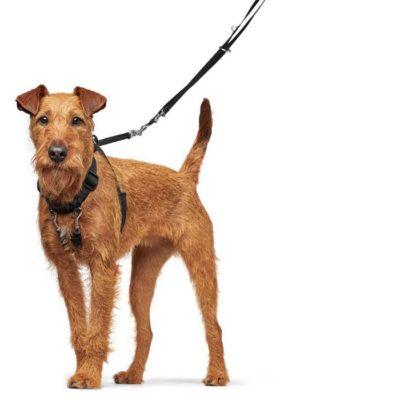 Hunter Side by side Training Education εκπαιδευτικο σαμαρακι για σκυλους