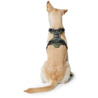 Hunter Divo εκπαιδευτικο σαμαρακι σκυλου ελεγχος σκυλων που τραβουν