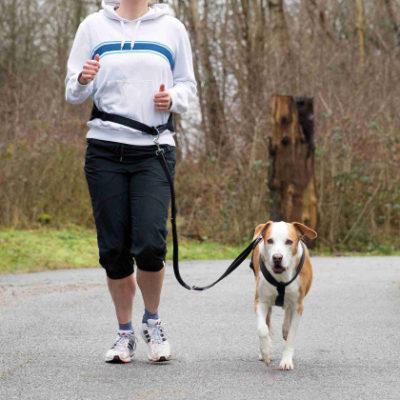 Trixie λουρι σκυλου ζωνη για τζοκινγκ (τρεξιμο)