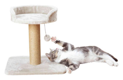 Τα Trixie Mica ονυχοδρομια γατας